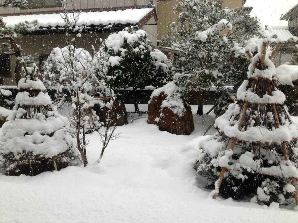 雪 首都圏 2013-01-01 10 23 39