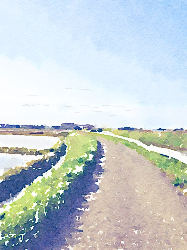 Painted in Waterlogue4