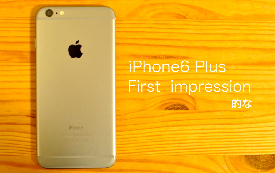 iPhone6 Plus0