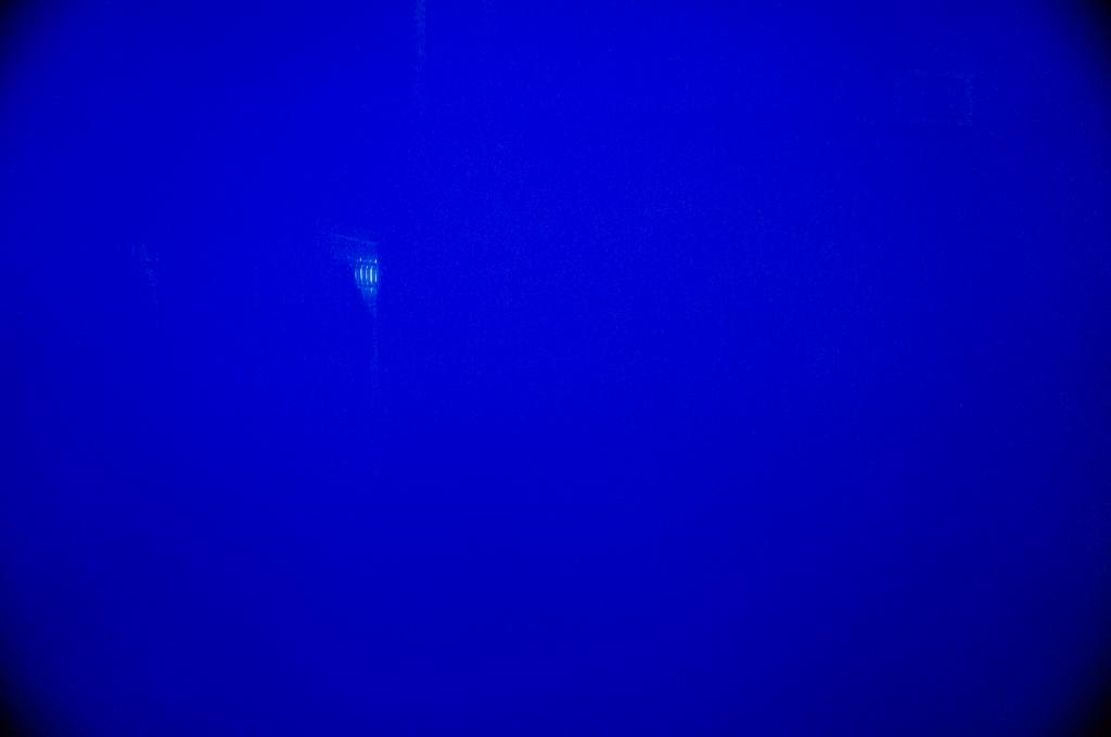 沈黙の水槽2