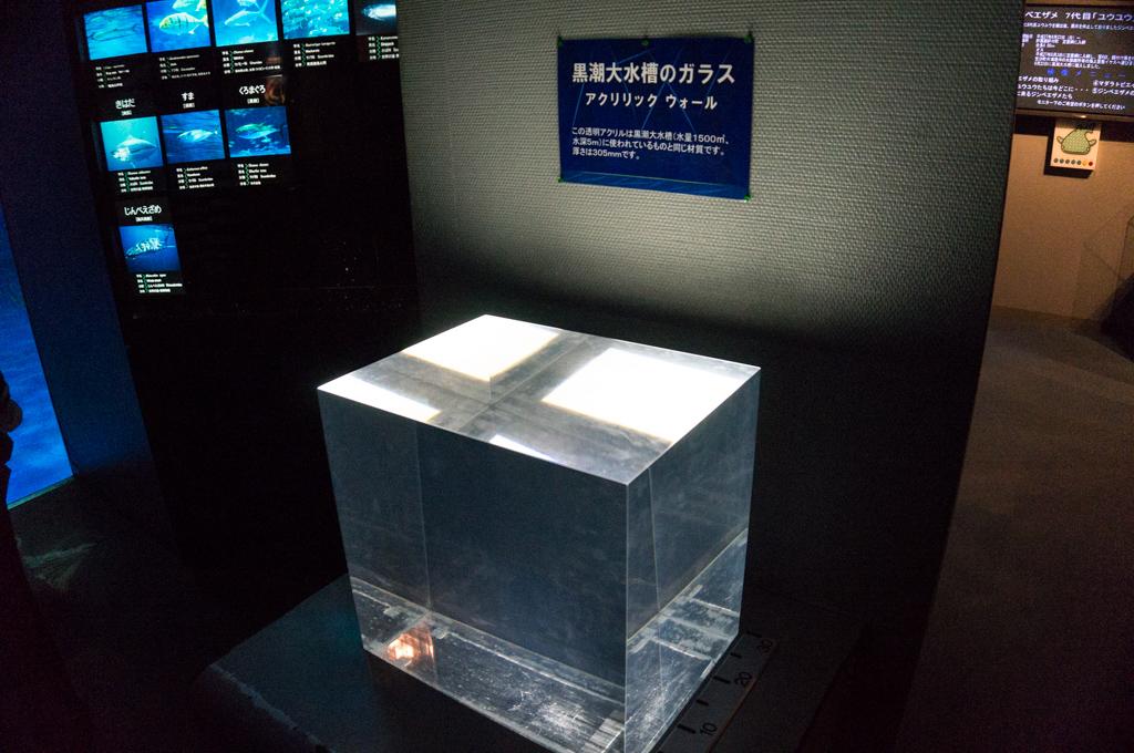 かごしま水族館12