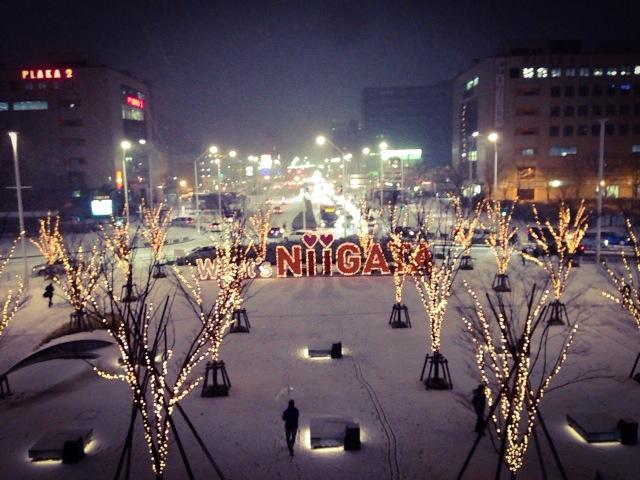 新潟2013-12-29 18 24 35