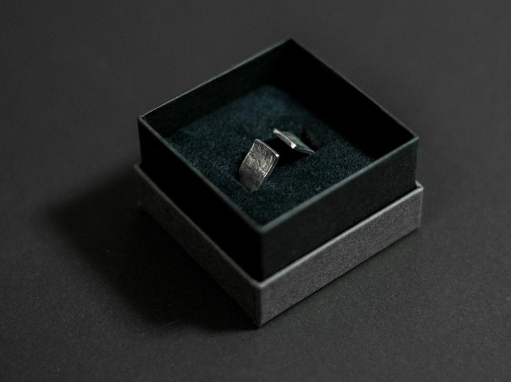nibi-ring-2