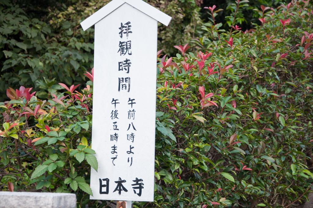 nokogiriyama1